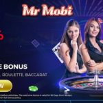 Mr Mobi Payout