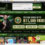 Springbok Signup Bonuses