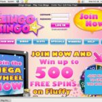 Zingo Bingo Cricket