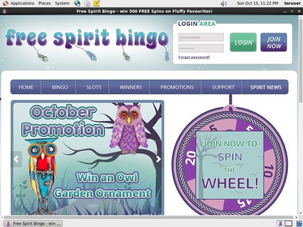 Free Spirit Bingo Add Currency