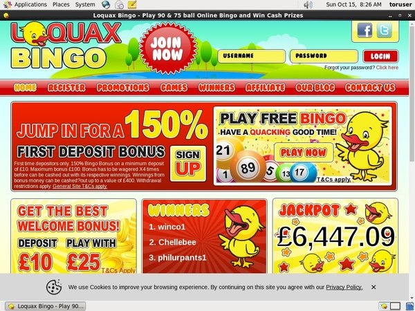 Loquax Bingo Live Casino Uk