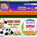 Lucky Cow Bingo Live Games