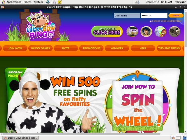 Lucky Cow Bingo Welcome Offer