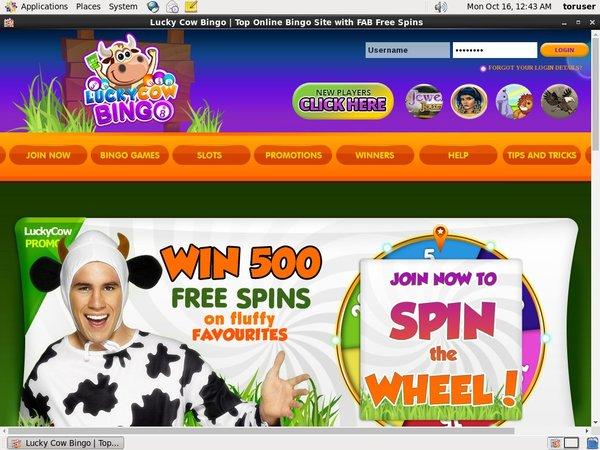 Lucky Cow Bingo 登録方法
