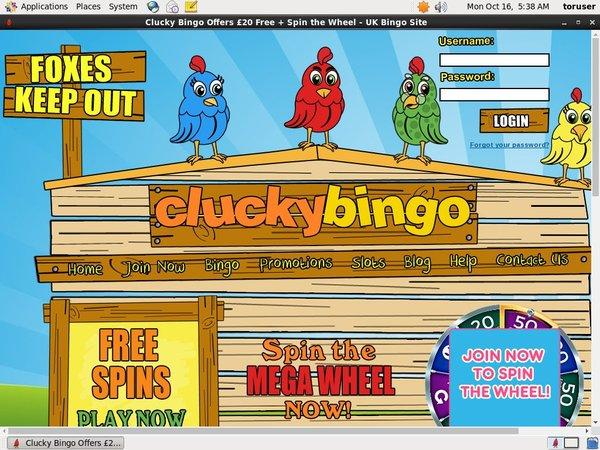 Clucky Bingo Upgrade Account